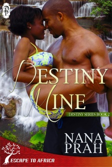 Get your copy for only 99 cents!