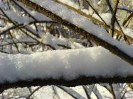 https://readinpleasure.files.wordpress.com/2015/09/37bf6-fresh_snow.jpg